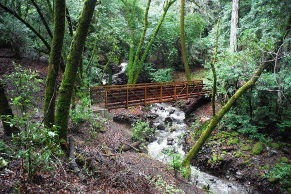 Bridge over rushing creek at North Sonoma Mountain