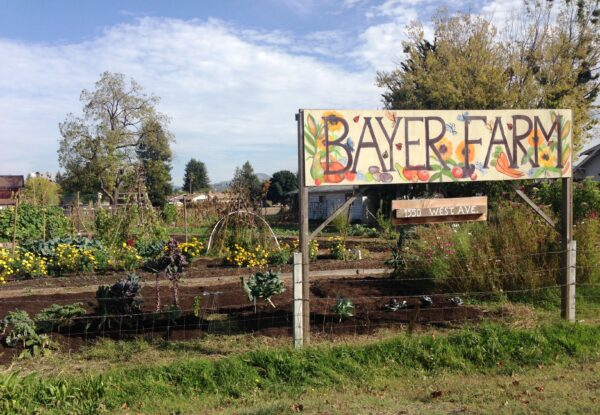 Bayer Farm sign in front of large wood planter boxes.