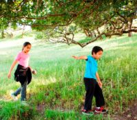 Two children and an adult walking on a trail through a green field with big trees in background