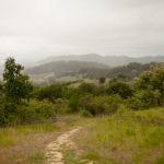 Healdsburg Ridge