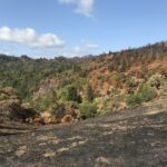 Pryor Ranch after the 2020 Walbridge fire.