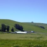 Maffia Ranch sits in an open space at the base of lush green hills.