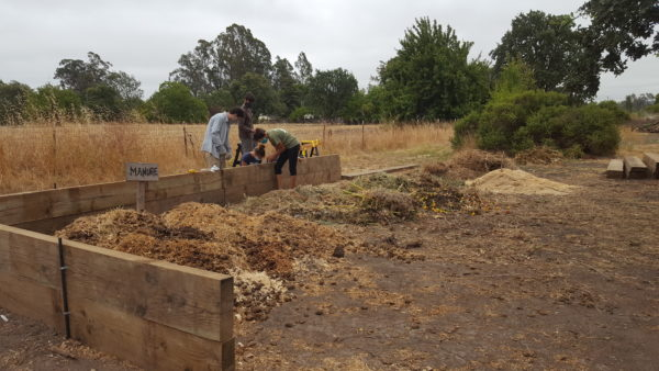 Youth Enviroleaders building a compost stall at Sonoma Garden Park.