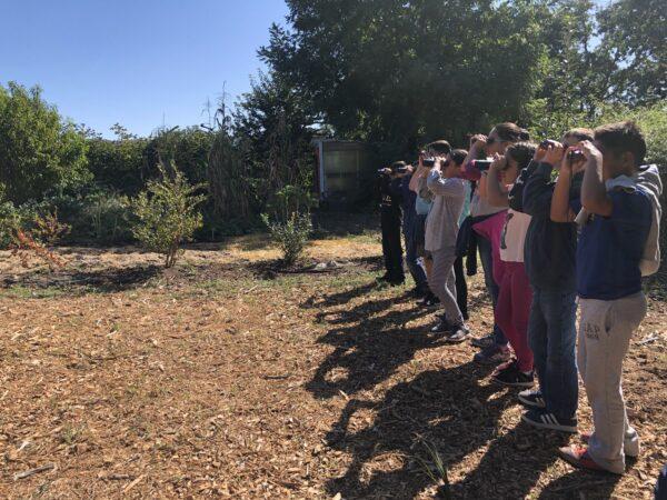 Row of children all looking up through binoculars.