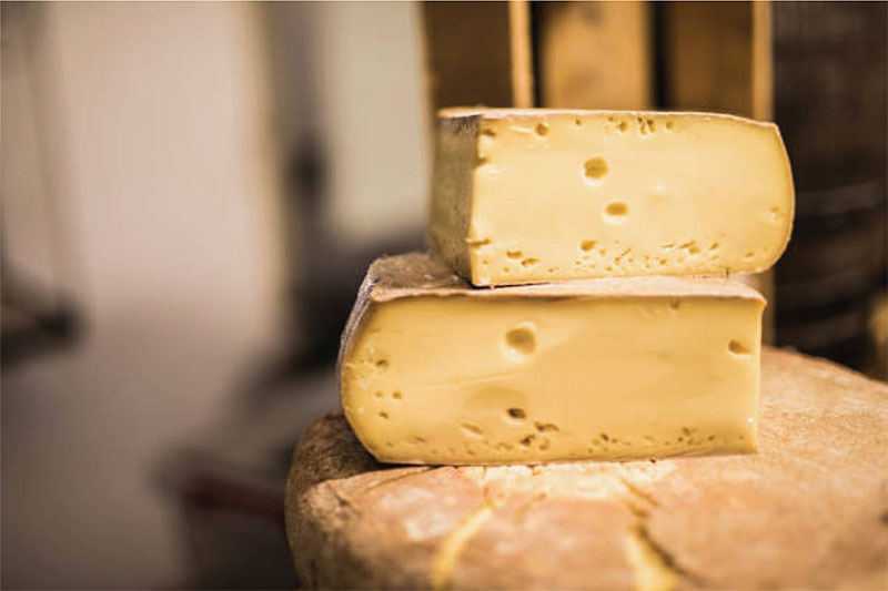 Sonoma County cheese